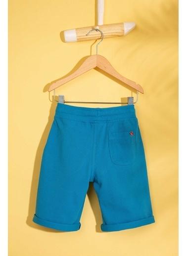 U.S. Polo Assn. Şort Mavi